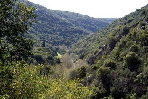 Galilea occidentale
