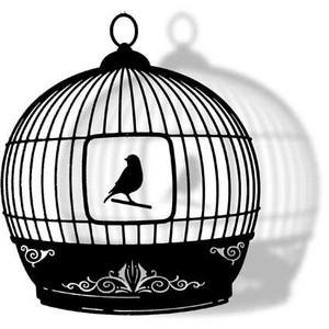 Canarino in gabbia