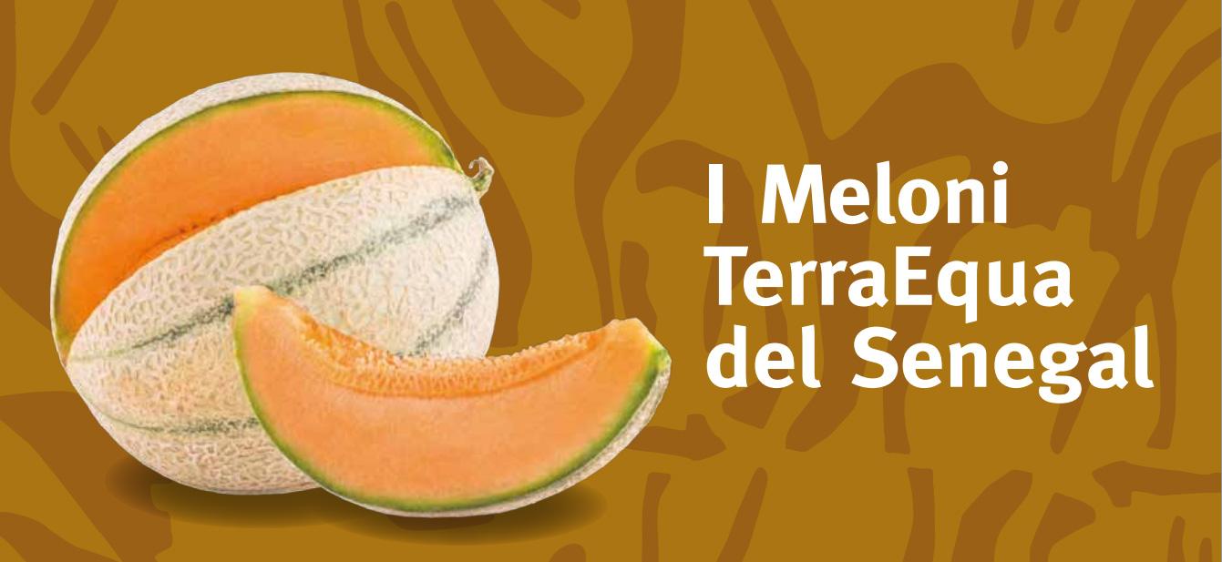 Meloni Senegal