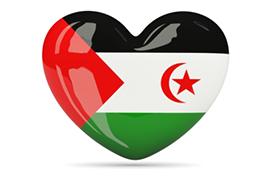 Saharawi: 9 piccoli ambasciatori di pace ospiti in Casentino