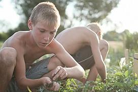 «School Garden» per l'imprenditoria agricola giovanile